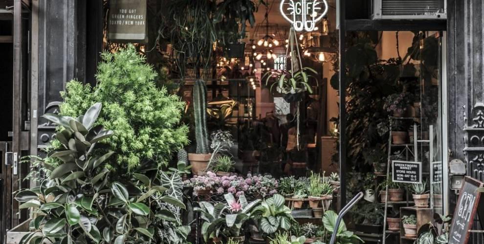 green fingers market, new york, brooklyn